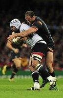 Wales v Fiji 011015