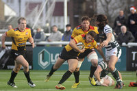Ealing Trailfinders v Cornish Pirates 241216