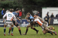 Cornish Pirates v Ealing Trailfinders 310116