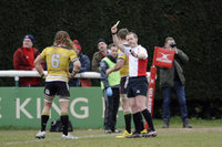 London Welsh v Cornish Pirates 190316