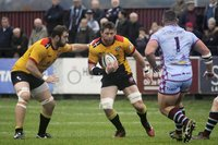 Rotherham Titans v Cornish Pirates 291016