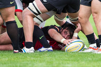 Hartpury College v Plymouth Albion 100916