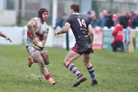 Plymouth Albion v Rotherham Titans, Plymouth, UK - 16 Feb 2019