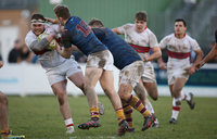 Plymouth Albion v Fylde 280117