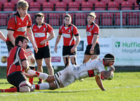Plymouth Albion v Blaydon, UK 25 Mar 2017